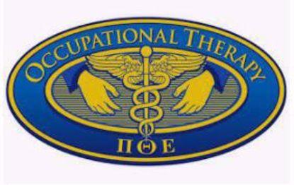 Picture of Pi Theta Epsilon - UB Tau Chapter Inductee Fee